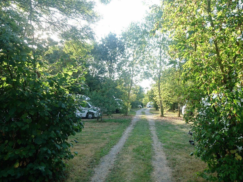 aperçu entre les branches camping la bradière